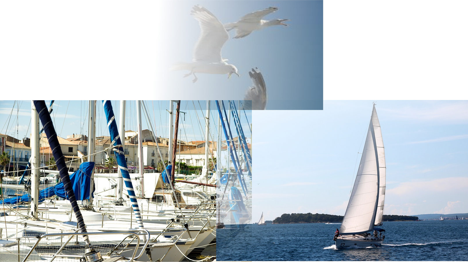 sailingimage